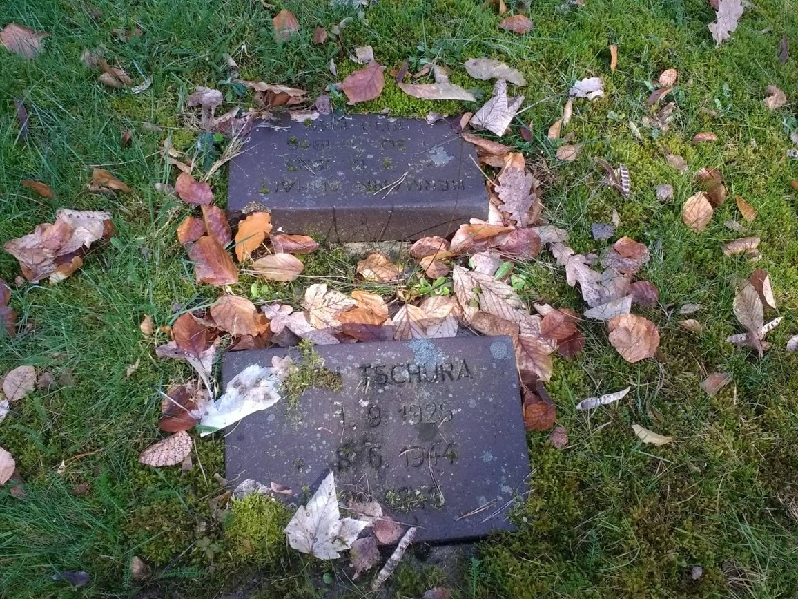 Cemetery Clean Up Image 1